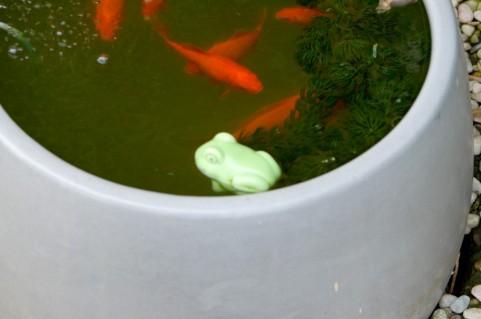 昭和の水槽(イメージ)
