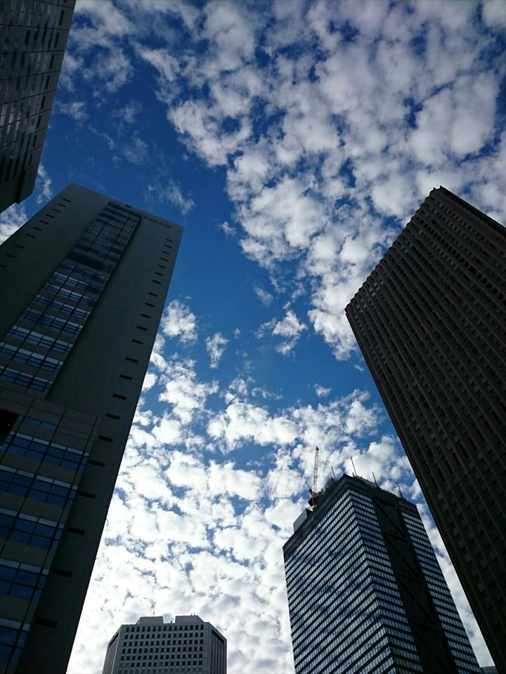 ただし、空を見上げると絶景。